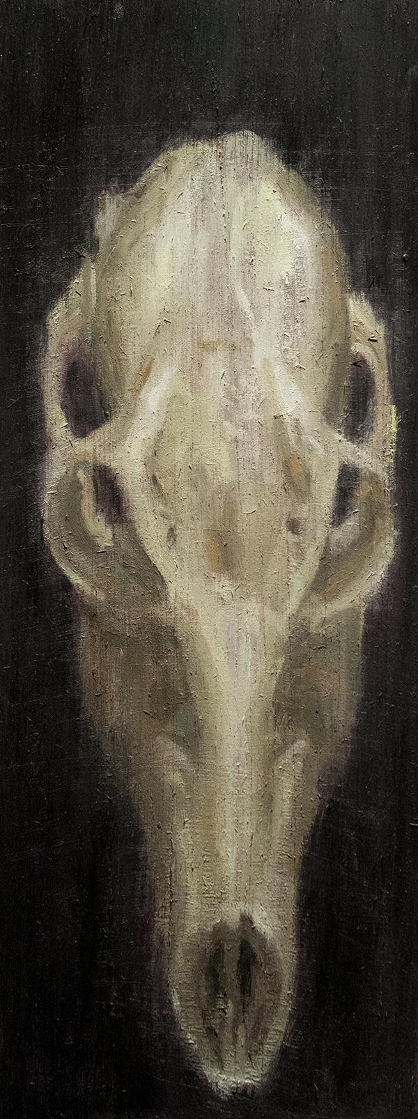 Deer Skull Study 2 / Oil Wood 1 - armandocabba | ello