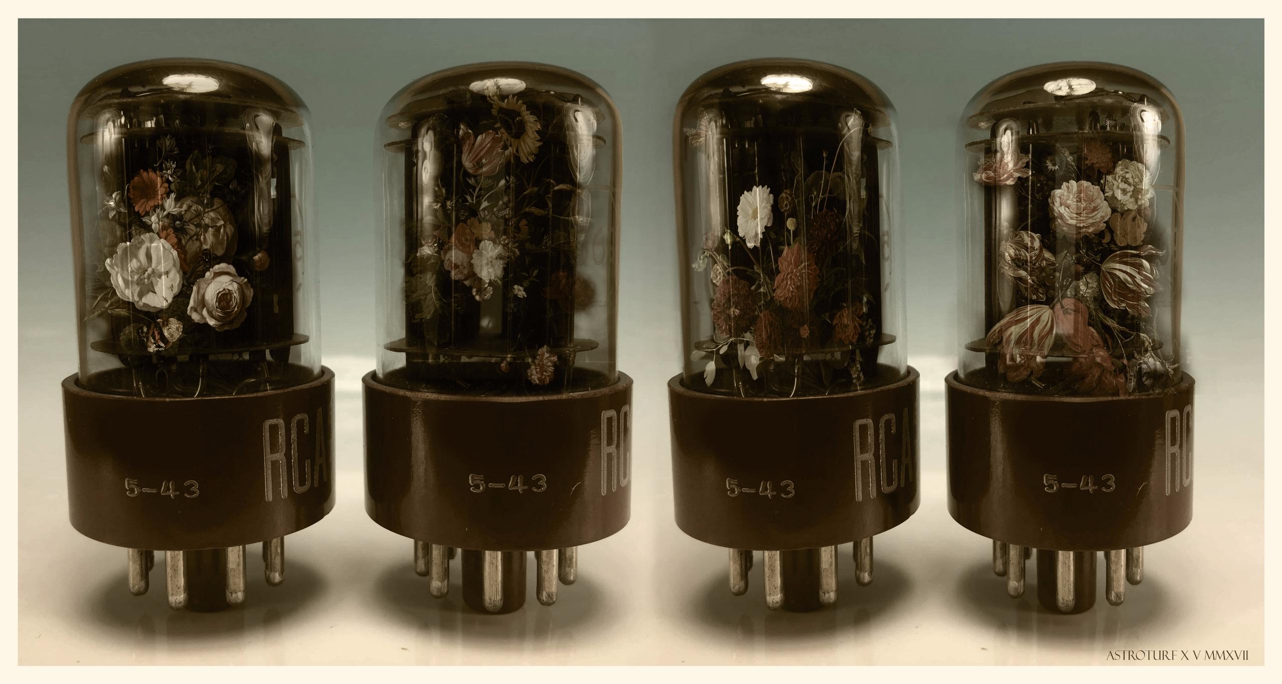 Vacuum Bulbs - collage#flowers#vacuumbulbs#distressed#journal#ephemera - astroturf   ello
