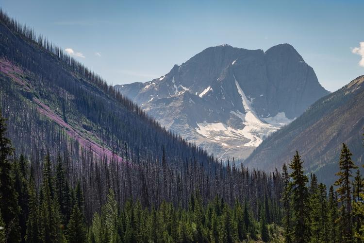 *Magenta Mountainsides* Yoho Na - jeffmoreau | ello