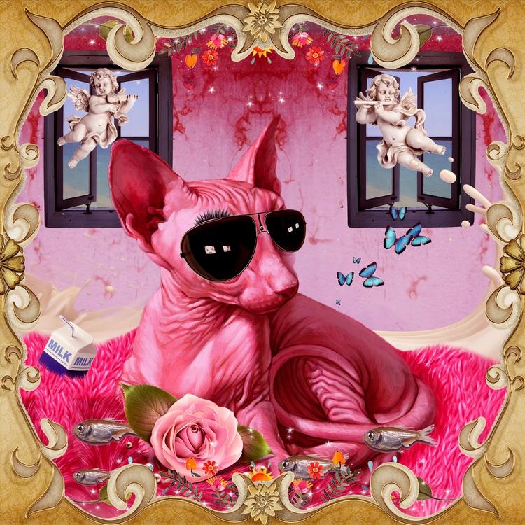 cat, pink - horsemanpuntouy | ello