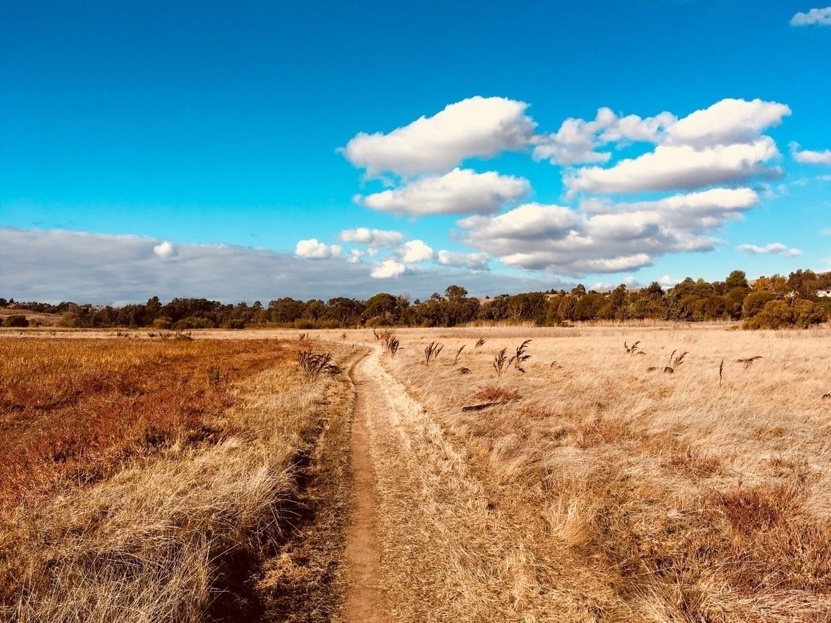 Dry days Benicia State Recreati - katemoriarty | ello