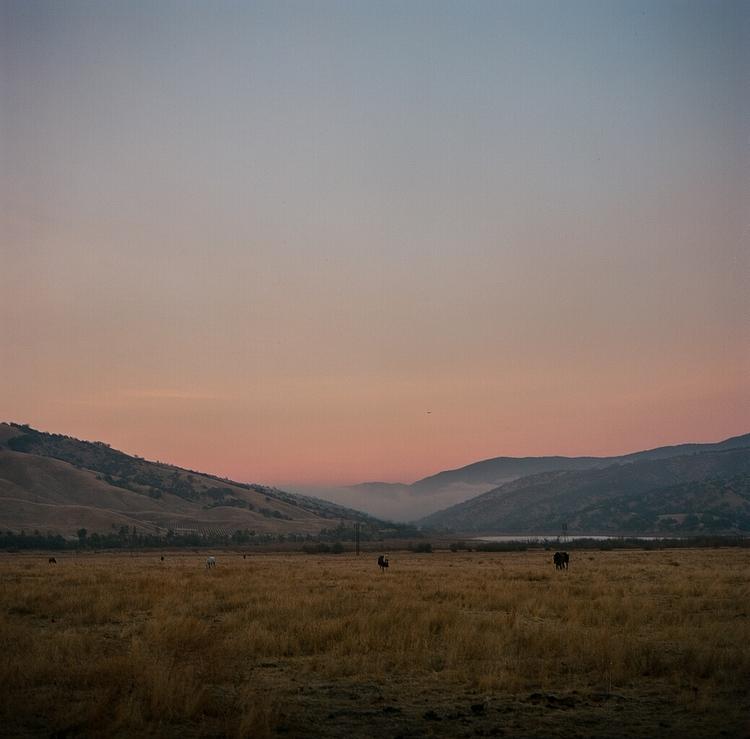 West - tejonranch, California, hasselblad500cm - teetonka | ello