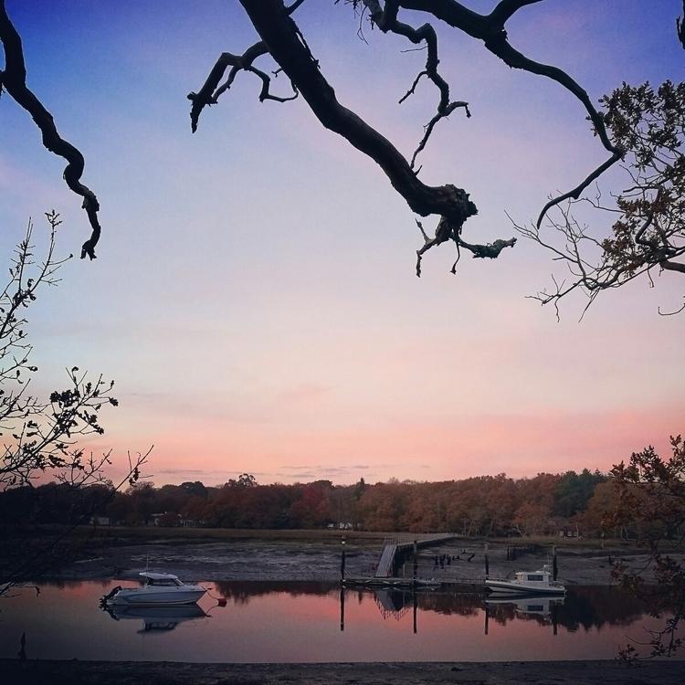 Peachy hues imbue estuary snaki - estelleclarke | ello