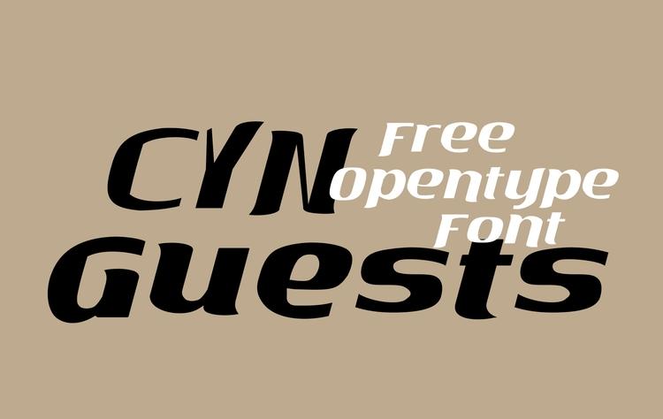 CYN Guests Ditone Display Serif - petro5va5iadi5 | ello