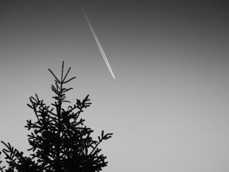sky, bnw, blackandwhite, airplane - konstantinosskoupras | ello