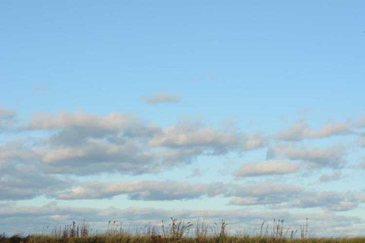 nature, beach, ocean_sky - jgreinerferris | ello