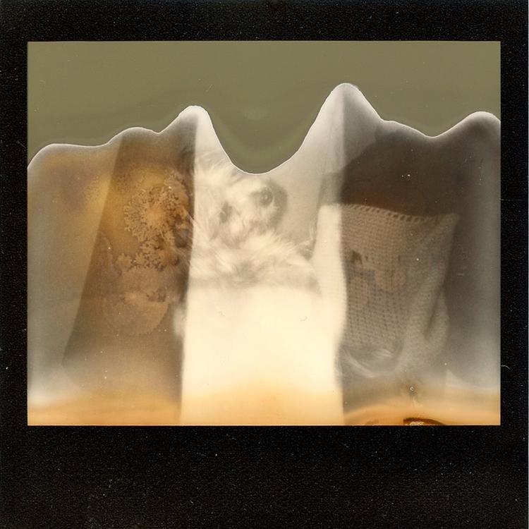 587 - polaroid - michaelphillips | ello
