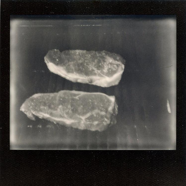 596 - polaroid - michaelphillips | ello