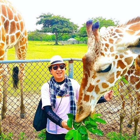 FeedingGiraffes, PettingGiraffes - vicsimon   ello