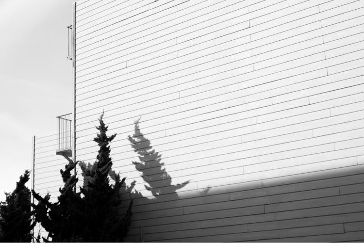 SF Backyard 26th Judah - skateboarding - kevinbiram | ello