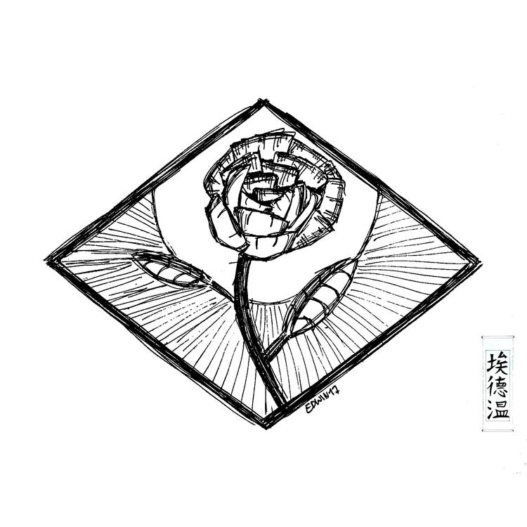 Rose sketch (47) find - draweveryday - edwln   ello