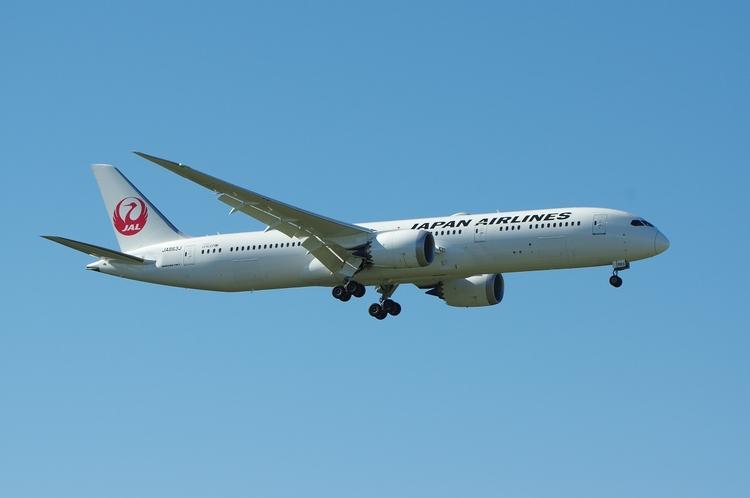 Japan Airlines, B787, Frankfurt - brummi | ello
