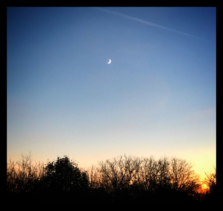 sunset, autumn, bluesky, moon - willkreutz | ello