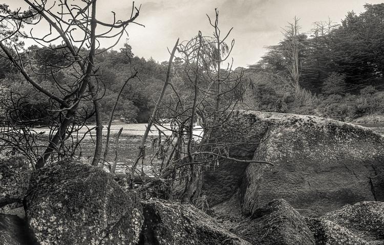 Holiday snaps VII - Sigma, Brittany - cyrille_baron | ello