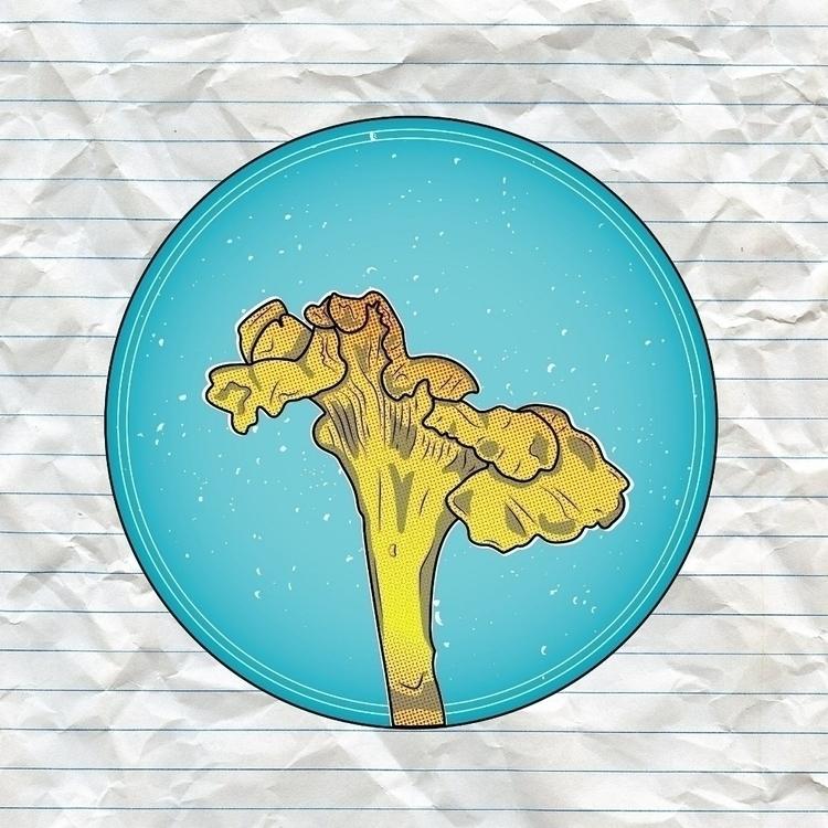 Chanterelle Mushroom - Vector G - jsmut | ello