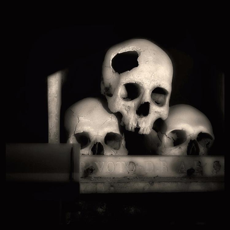 Skull (01) Augusto De Luca - AugustoDeLuca - augusto-de-luca | ello