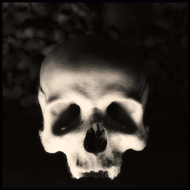 Skull (03) Augusto De Luca - AugustoDeLuca - augusto-de-luca   ello
