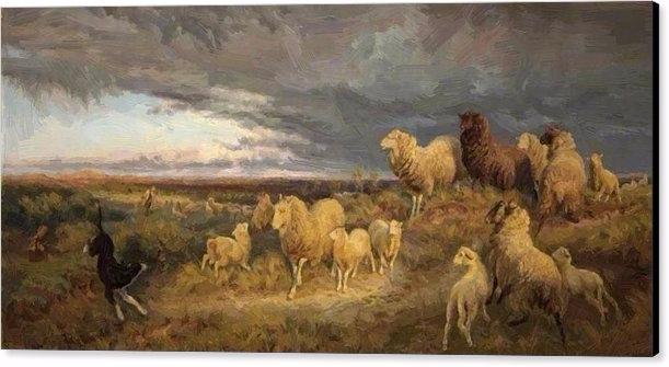 Approaching Thunderstorm Flocks - pixbreak | ello