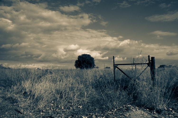 landscape, BW, photgraphy - ydoron1 | ello