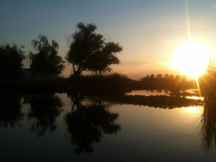 sunset, reflection, fishpond - bovehorgaszto | ello