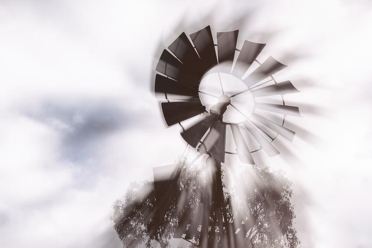 Whirlygig Words Image: Gary Lig - garylight | ello