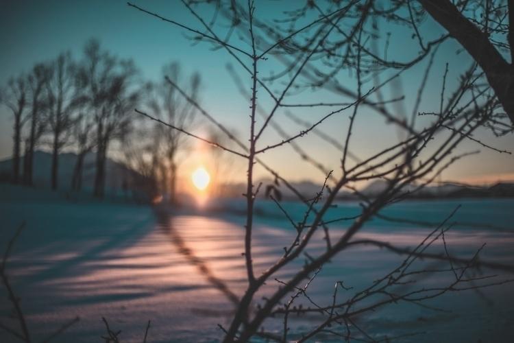 Winter Johannes Bornlöf ears, s - scappiamosuaberlino | ello