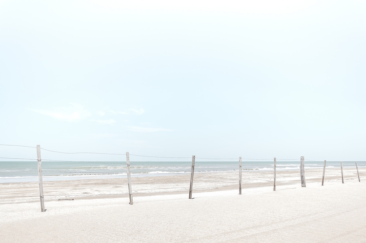 pretty garden - sea, ocean, summer - elgeniodelpub | ello
