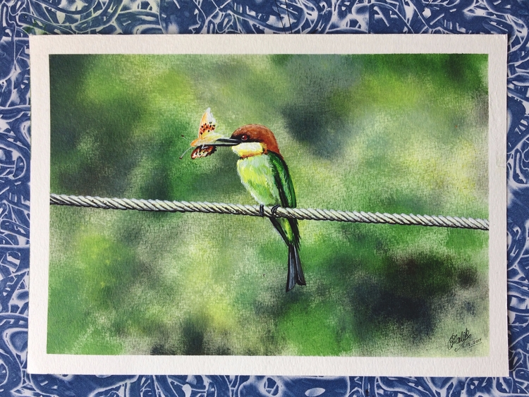 shot Chestnut-headed Bee-eater  - rakeshmalik91   ello