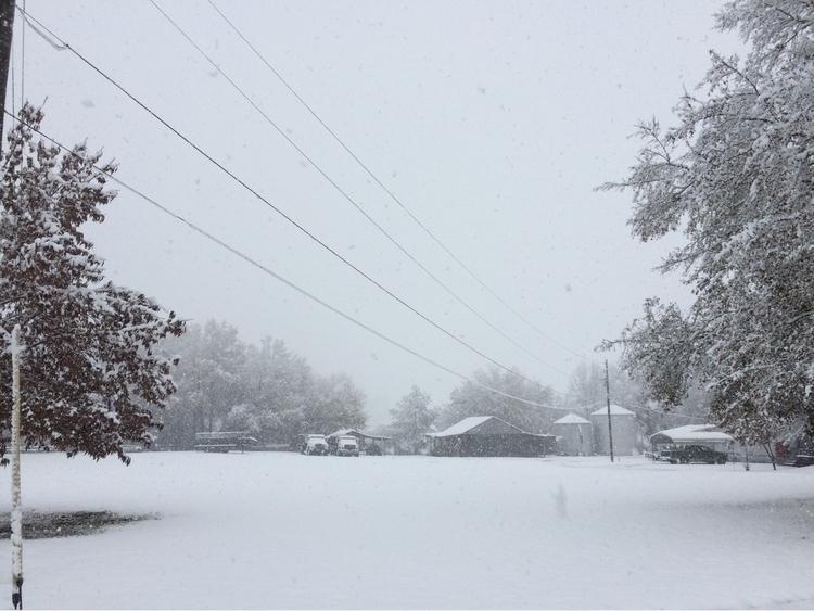 Snow, day, bama, country, farm - libdam | ello