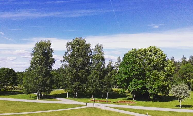 Många mötas på Lilla Aska Grift - skogskyrkogardar | ello