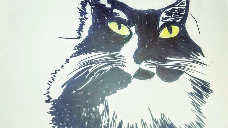 Bella Ink Drawing - kathryn_savino | ello