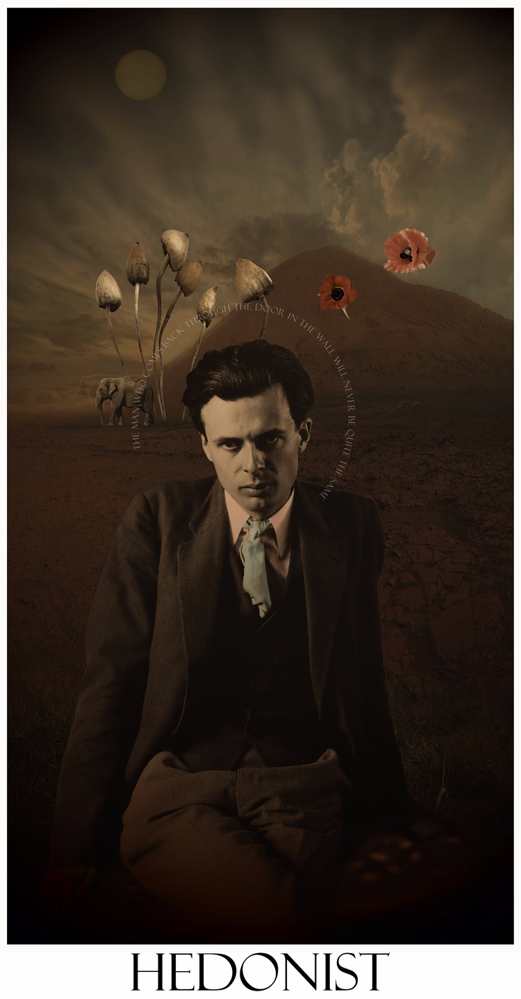 collage#aldous huxley#doors per - astroturf | ello