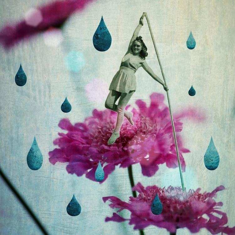 Walk garden - rosapicnic   ello