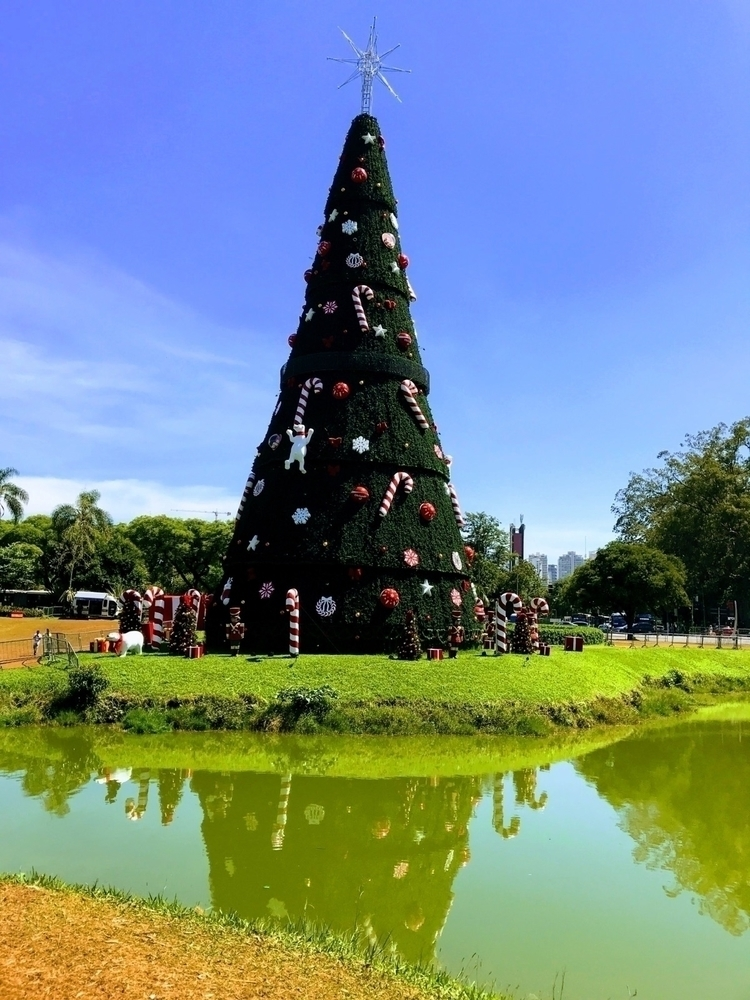 Árvore de Natal Ibirapuera em f - antoniomg | ello