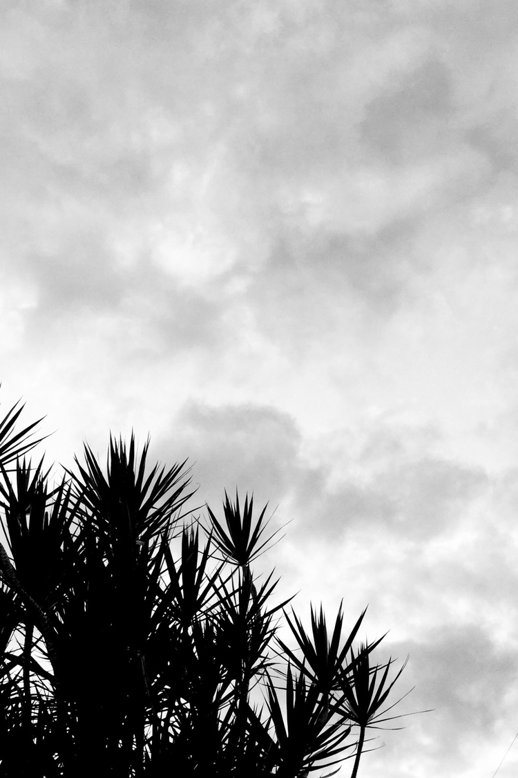 Cloudy Evening Sky Apps - mikefl99 - mikefl99 | ello