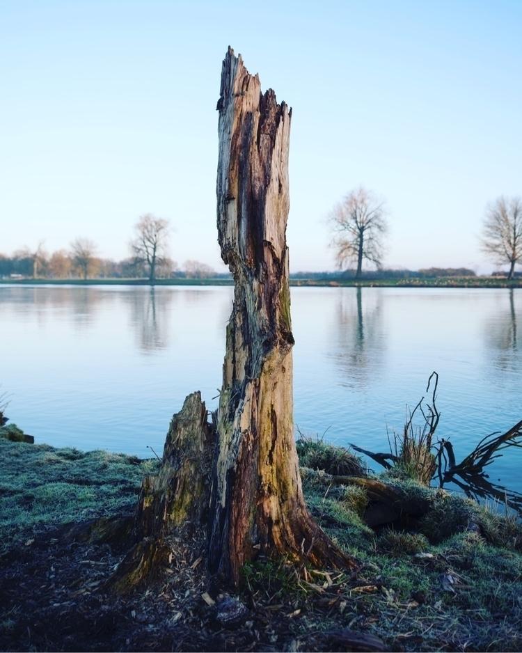 enthropie - grave, maas, river - marcusjanssen | ello