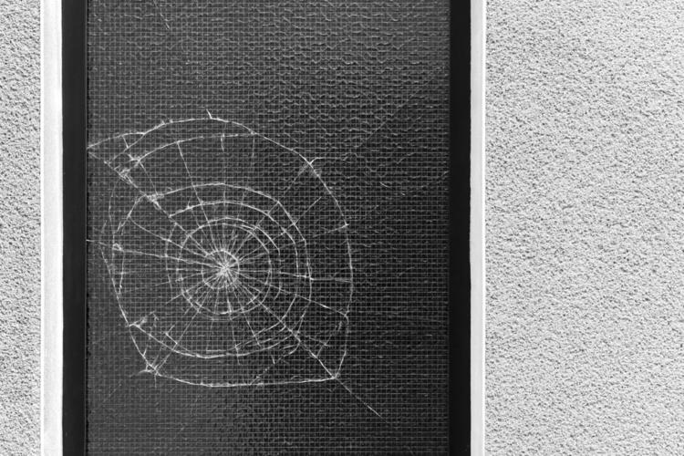 nautilus resistance - photography - marcushammerschmitt | ello