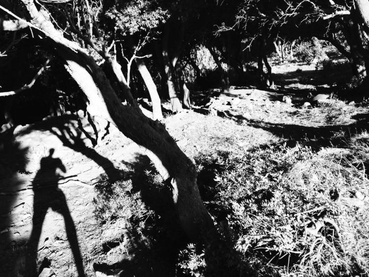 Corsica - bnwphotography, shadows - dbault | ello