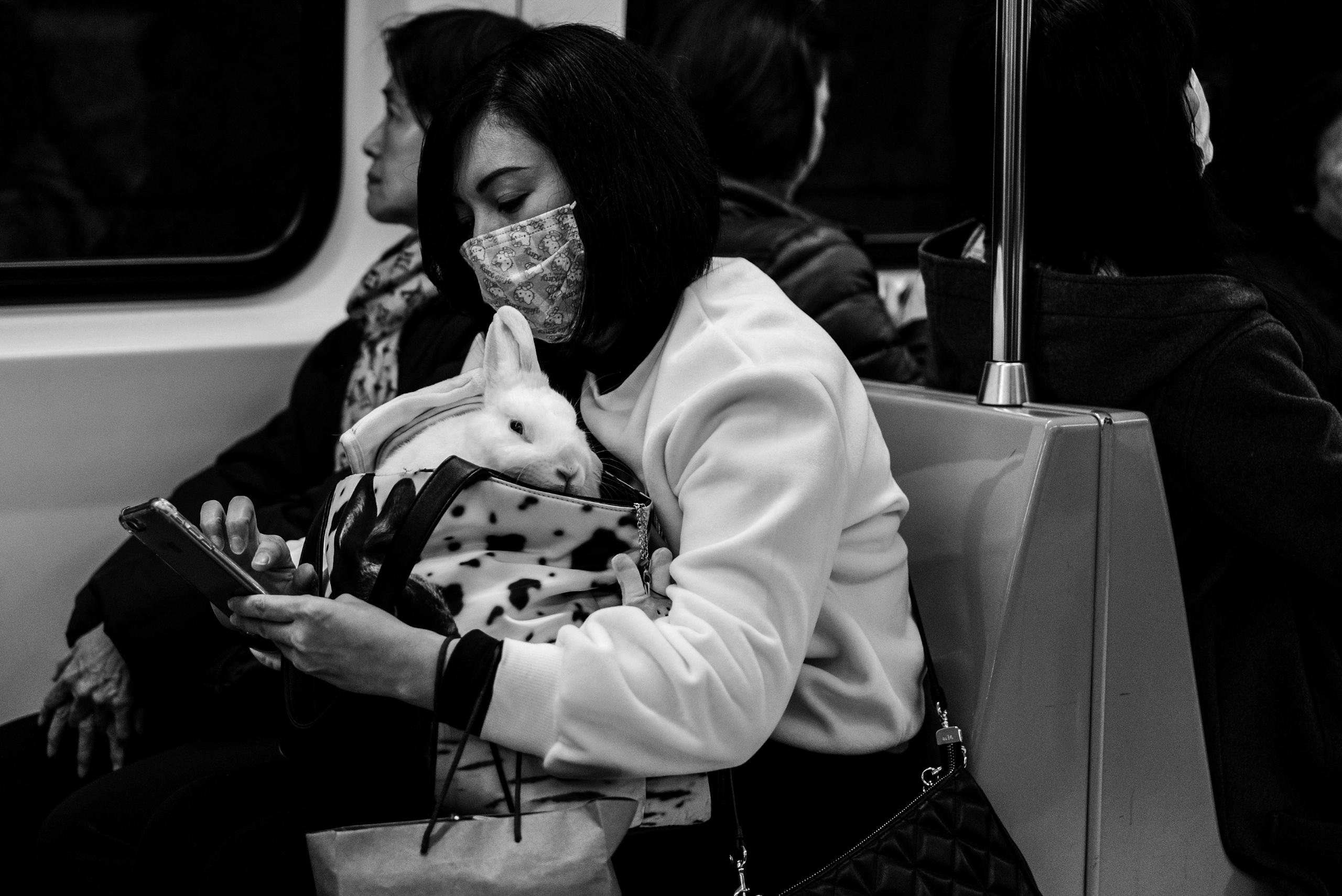 Taipei Metro riders. bunny ride - johnnyg_photography   ello