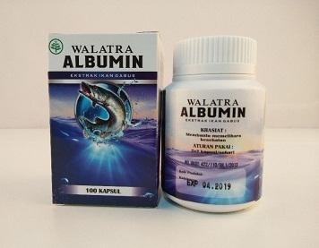 walatra albumin capsule firt he - albuminkapsul | ello