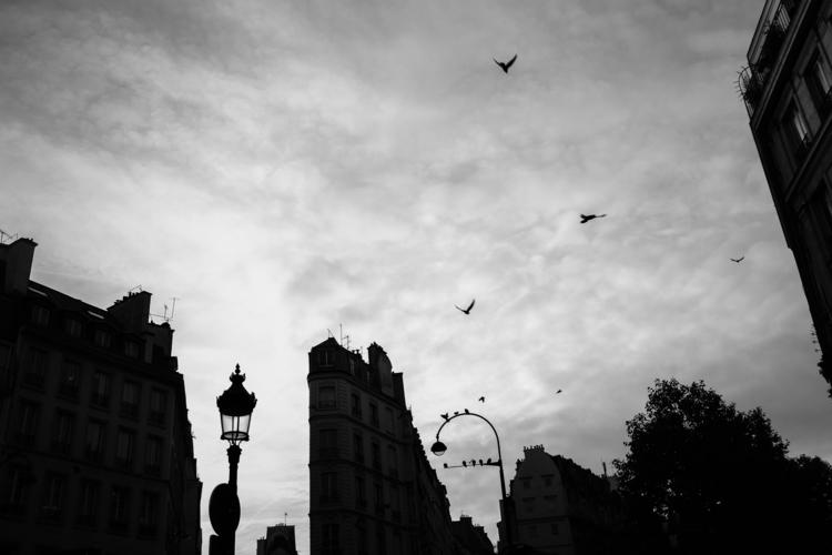 Paris autumn 2017 - urbanphotography - hpchavaz | ello