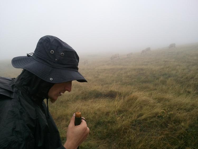 Wanderer, Morningrain, Cowfields - guimov | ello