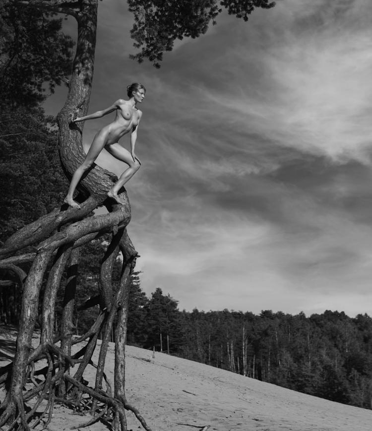 Nude tree - actyon   ello