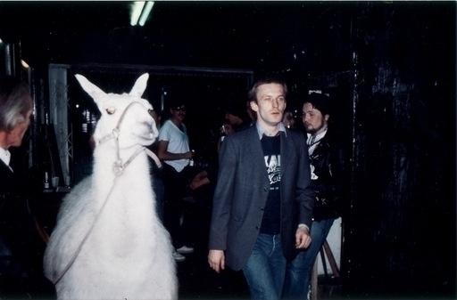 Martin Kippenberger med en lama - kjmh | ello