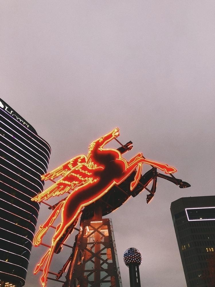 Dallas, Texas - dallas, photography - shawnnmckay | ello
