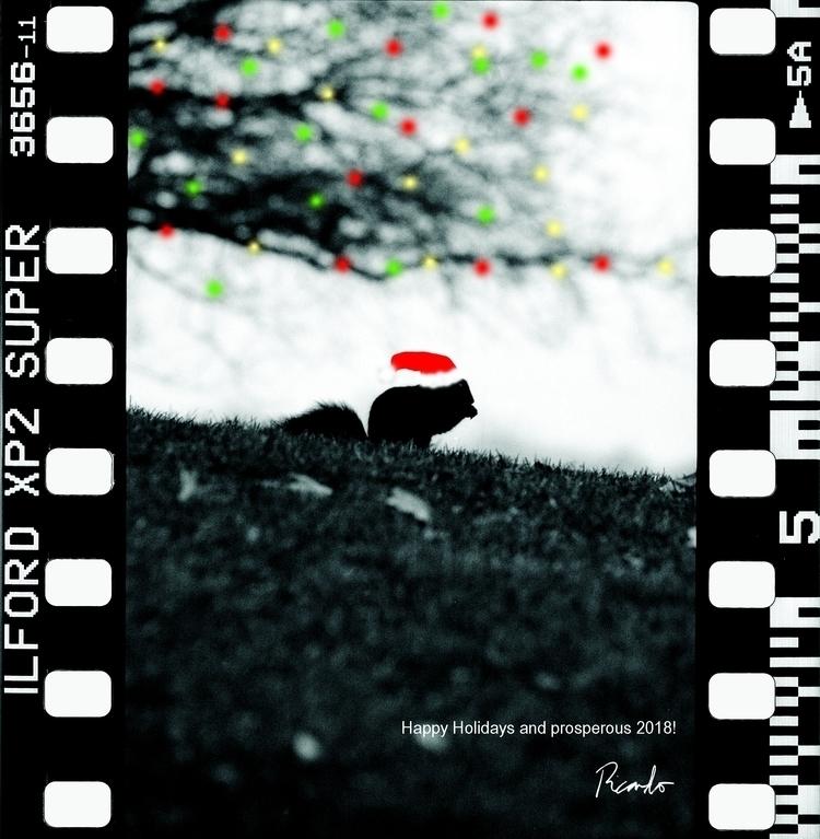 + ps - shotonfilm, analogue, oldschool - photoinmotion | ello