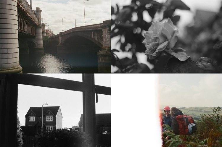 latest batch films processed su - diannespanner | ello