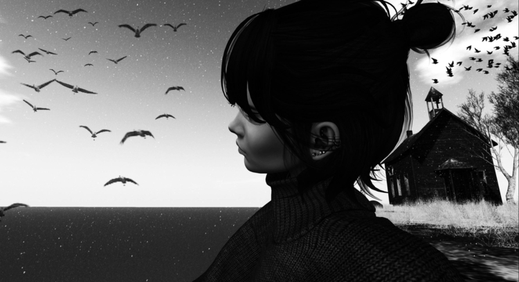 frenchy25 Post 31 Dec 2017 14:22:00 UTC | ello