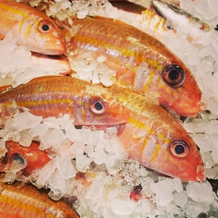 resist, fresh! Seafood City, ch - raelynne | ello