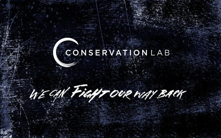 Custom type calligraphy Conserv - mbrasnovic | ello
